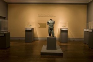 Museum Exhibits